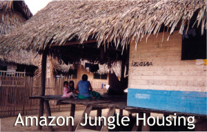 Amazon Jungle Housing - Linda Deir took picture.
