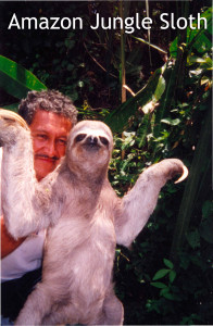 Amazon Jungle Sloth - Linda Deir took picture.