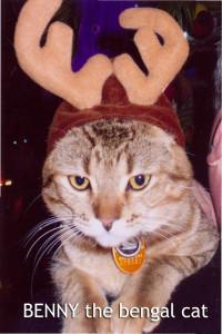 Benny Bengal Cat In Antlers - Linda Deir