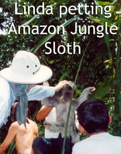 Linda Deir Petting Amazon Jungle Sloth