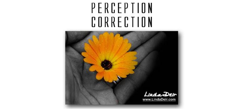Perception Correction, by Linda Deir