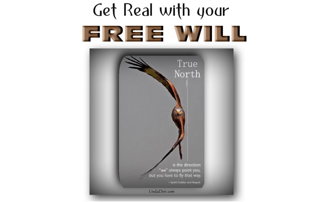 Get Real with your Free Will